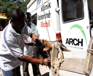 Haiti_clinic_vets300