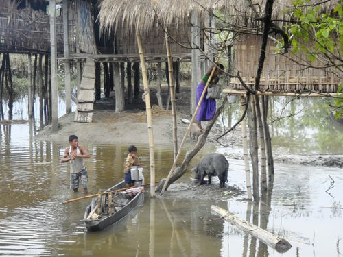World Animal Protection - Animals in Disasters Blog: July 2012
