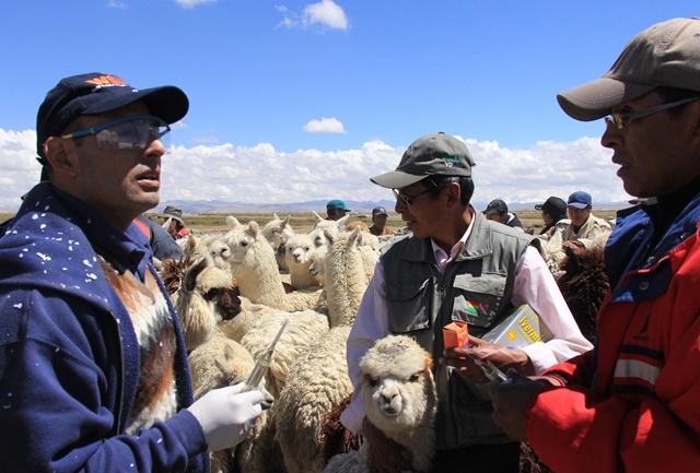 El Dr. Vásquez brinda consejos a los miembros de la comunidad para desparasitar a sus animales