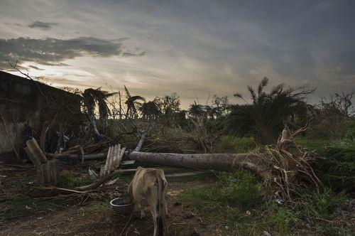 Cyclone Phailin Response 151013_087_1