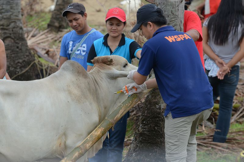North Cebu Intervention 2 788